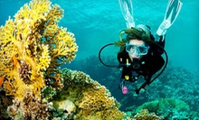 $189 for an Open-Water Diver Certification Course from Sonoma Coast Divers ($384 Value)