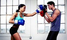 10 Classes or One Month of Unlimited Classes at Pure Performance Martial Arts Center (Up to 60% Off)