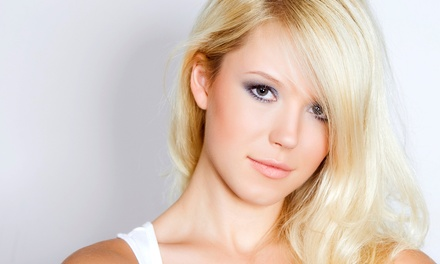 Haircut with Style, Partial or Full Highlights, or Brazilian Blowout at Wild Roots Hair Studio (47% Off)