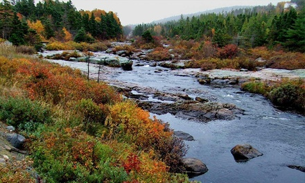 Admission for Two or Four at Manuels River Hibernia Interpretation Centre (50% Off)