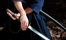 Samurai-Sword, German Longsword, and Kendo Classes at Sword Class NYC (Up to 63% Off). Four Options Available.