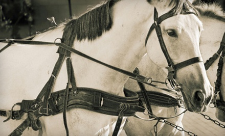 $45 for a One-Hour Horse-Drawn Carriage Ride for Up to Six from Milwaukee Coach and Carriage ($90 Value)