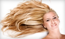Haircut, Style, and Blow-Dry with Option for Full Color or Partial Highlights at Gold on Grand Salon (Up to 59% Off)