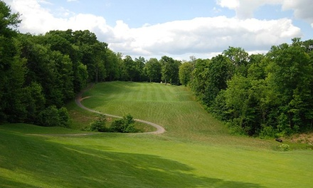 2015 Membership or 18-Hole Round of Golf and Cart for Two or Four at Pheasant Ridge Golf Club (Up to 59% Off)