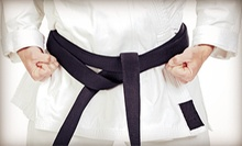 10 or 20 Mixed Martial Arts Classes at Toyoda Aikido Center (60% Off)