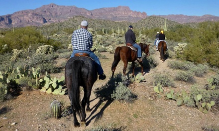 $30 for a Two-Hour Trail Ride for One at Don Donnelly's D-Spur Ranch & Riding Stables ($60 Value)