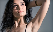 Six Laser Hair-Removal Treatments on a Small, Medium, or Large Area at The Natural Place in Broomfield (Up to 90% Off)