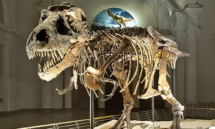 One Adult or Child Discovery Pass to The Field Museum (Up to 31% Off)