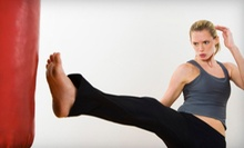 10 or 20 Fitness Classes at Velocity Martial Arts (Up to 77% Off)