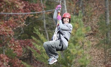 $46 for a 2.5-Hour Legacy Deluxe Zipline Tour of the Canopy Plus T-Shirt from Lake Lanier Canopy Tours ($95 Value)