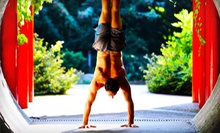 10 or 20 Drop-In Yoga Classes at Yoga Para Vida (Up to 76% Off)
