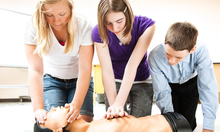 CPR and First Aid for One, Two, or Four at Family 1st of Virginia Healthcare and Safety Training Center (Up to 58% Off)