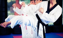 One or Three Months of Jujitsu Classes, or a Six-Week Self-Defense Camp at Relson Gracie Jiu-Jitsu (Up to 88% Off)