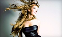 Shampoo, Haircut, and Blow-Dry, or Haircut and Single-Process Color at Velocity Hair Salon (Half Off)