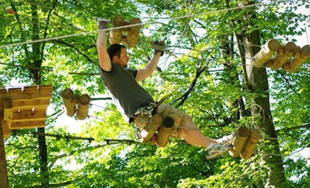 Zipline and Tree Climbing Tour with Climbing Gloves for Two or Four at The Adventure Park at Storrs (Up to Half Off)