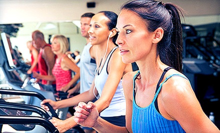 One- or Three-Month Membership to Equilibrium Zen Gym (Up to 59% Off)