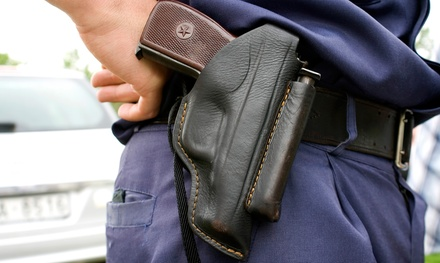 Basic Firearms Course with Range Time for One or Two at American Alert Security Services Inc. (42% Off)