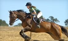 One or Three 60-Minute Horseback-Riding Lessons at Sundae Stables (Up to 56% Off)