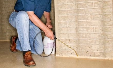 $150 Worth of Pest-Control Services from 99 Pest Solutions