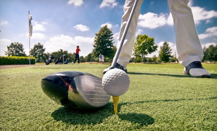 $189 for 5 Rounds of Golf, 10 Lesson Clinics, and Champion Pro Series Putter at Wildcat Golf Club (Up to $1,234 Value)