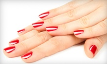 One or Three Shellac Manicures with Pedicures or Full Set of Fiberglass Artificial Nails at Salon Ajavi (Up to 65% Off)