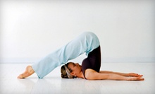 10 or 20 Classes at Yoga Oasis (Up to 80% Off)
