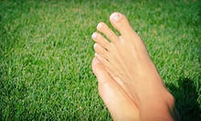 Laser Nail-Fungus Removal for One or Both Hands or Feet at Blue Spruce Cosmetic &amp; Laser Clinic (Up to 85% Off)