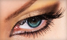 Full Set of Mink-Blend Lashes with Touchup Option at Winx Beautique (77% Off)