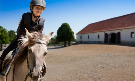 One-Hour Horseback-Riding Lesson, or Trail Ride for One, Two, or Four from Koko Crater Stables (Up to 55% Off)