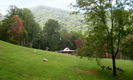 groupon daily deal - 2- or 3-Night Log-Cabin Stay for Up to Eight at Randall Glen in Greater Asheville, NC. Combine Up to 6 Nights.