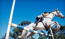 One or Three Private One-Hour Horseback-Riding Lessons at Valley View Acres (Up to Half Off)