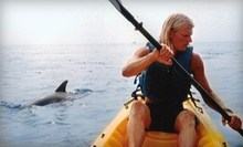 $29 for a 2-Hour Guided Dolphin Kayak Tour from Chesapean Outdoors ($60 Value)