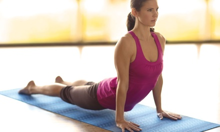 Premium Yoga and Fitness Accessories and Organics for the Homefrom Gaiam(50% Off). Two Options Available.