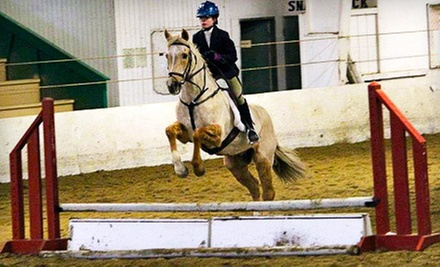 One, Two, or Three 60-Minute Horseback-Riding Lessons at Freedom Run Equestrian Center (Up to 72% Off)