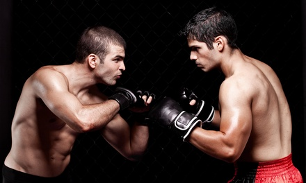 $28 for One Ticket Plus Food and Drink Voucher to When Champions Collide MMA at Budweiser Events Center ($40.50 Value)