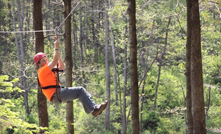 Zipline Adventure for Two or Four from Lark Valley Zip Lines (Up to 53% Off)