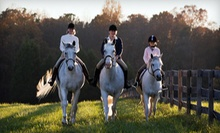 Horseback-Riding Lessons or Kids' Party at Kindred Spirits Equestrian Facility (Up to 55% Off). Three Options Available.