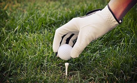Baseball Pitching Lesson Package or Golf Swing Lesson Package at PAR 5 Fitness (Up to 82% Off)