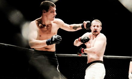 $100 for Alaska Fighting Championship Ticket Package for Two to All Remaining Events in 2013-14 Season ($291.50 Value)