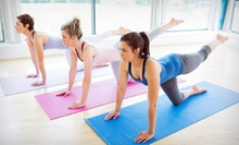 $20 for 30 Classes from MetaBody Yoga & Fitness Pass ($350 Value)