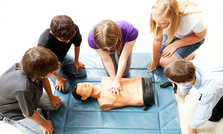 $129 for Online PALS and BLS Certification Courses from National Health Care Provider Solutions ($260 Value)