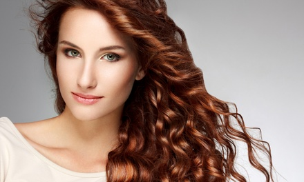 Women's Cut w/Option of Single-Process Color or Highlights at Classic Hair Designs Salon & Spa (Up to 50% Off)