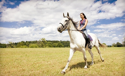 One, Two, or Four 30-Minute Horseback-Riding Lessons at Country Road Stables (Up to 54% Off)