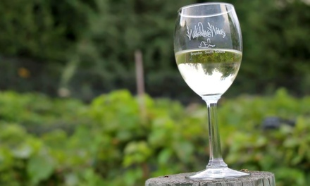 Wine Tasting with Take-Home Bottles for Two or Four at Wilde Prairie Winery (50% Off)