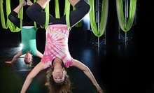 $45 for Five General Fitness Classes at Shine Alternative Fitness ($75 Value)