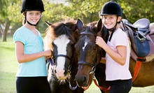 $75 for Four 60-Minute Horseback-Riding Lessons at Crossroads Farm ($180 Value)