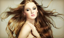 Haircut, Blow-Dry, and Style with Options for Single-Process Color or Full Highlights at O Salon & Spa (Up to 59% Off)