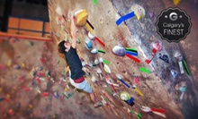 $40 for One Introductory Climbing Lesson and a One-Month Pass at The Crux Climbing &amp; Bouldering ($111.43 Value)