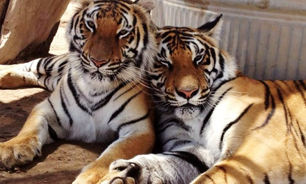 General or Guided Tour at Forever Wild Exotic Animal Sanctuary (Up to 38% Off). Five Options Available.