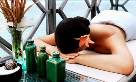 Massage with Heat Therapy, Aromatherapy Blended Facial or Both at Morgan Ford Salon & Spa (Up to 52% Off)